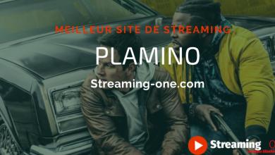 Photo of Plamino