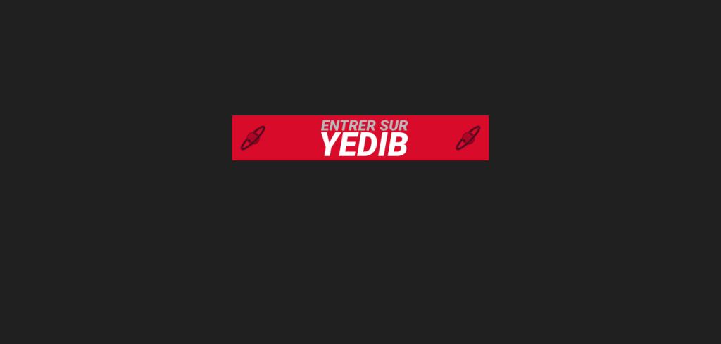 Yedib 8